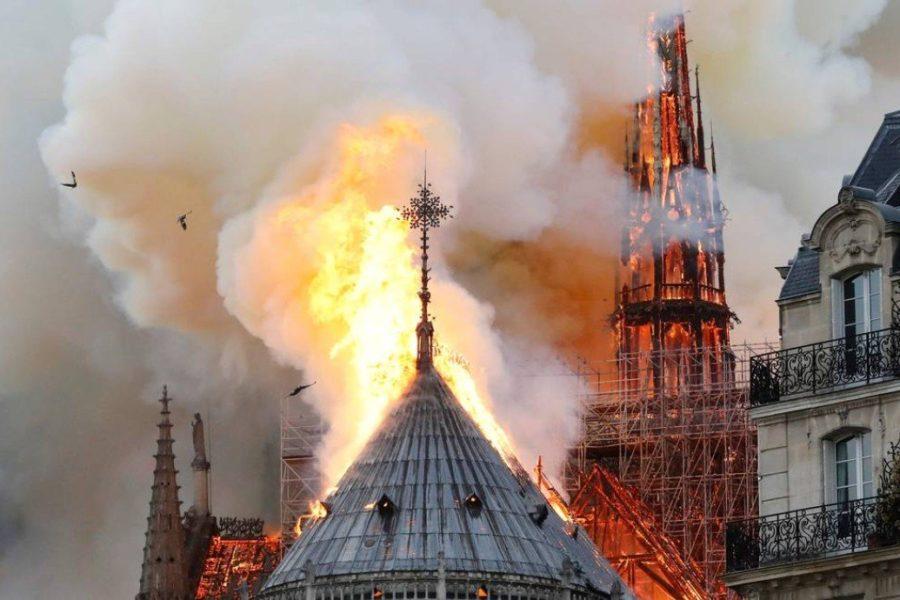 França: Notre-Dame, aqueles que fazem lenha da árvore caída