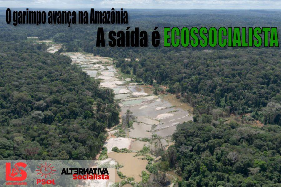 O Garimpo avança e destrói a Amazônia: a saída é o Ecossocialismo